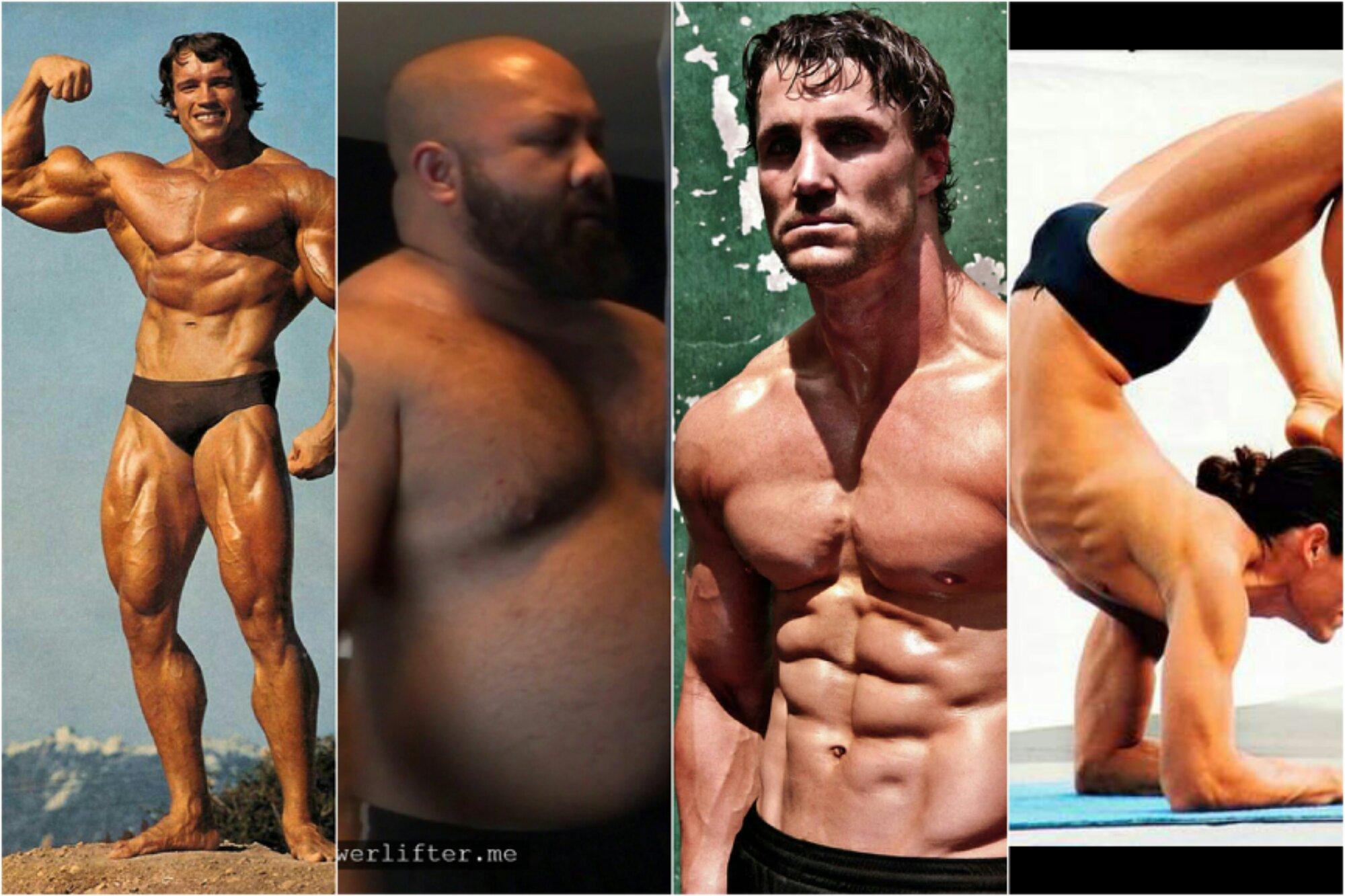 greg plitt, arnold, power lifting, comparison.