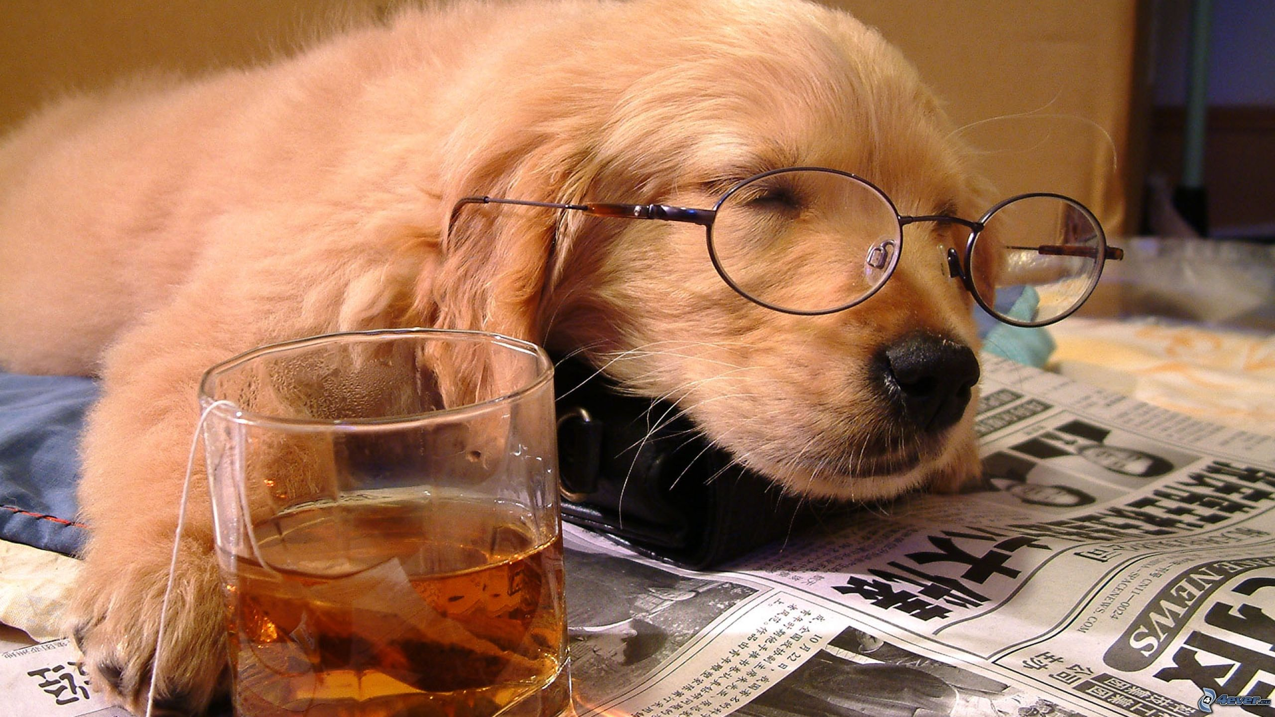 Think again how sleep can improve your performance!!